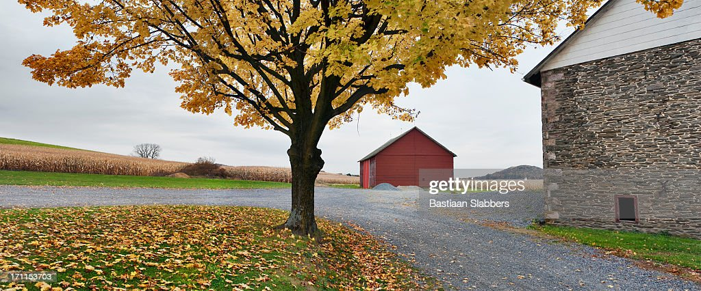 Fall at Rural Pennsylvania Farm