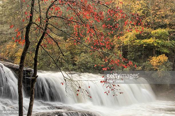 Fall color and Hooker Falls