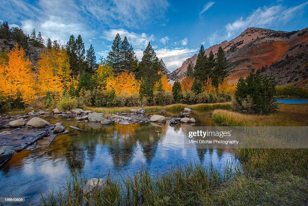 Fall Color At North Lake