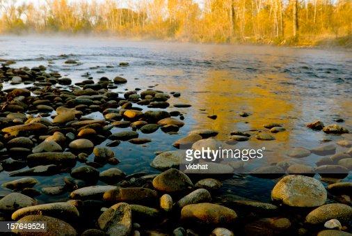 Fall colors along Boise River