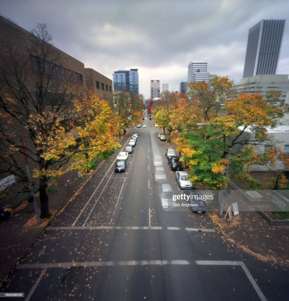Fall colors and downtown traffic : Stock Photo