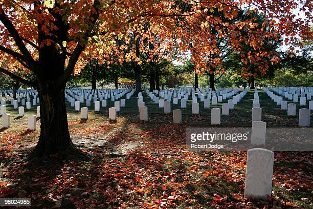 Fall Colors at Arlington National Cemetery