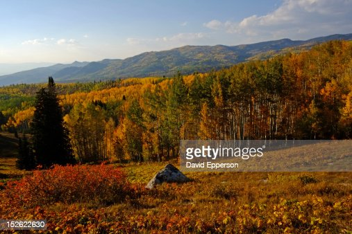 fall colors in Colorado Rocky Mountains