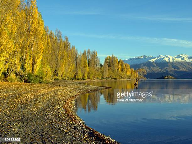 Fall colors of Lake Wanaka