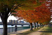 Fall foliage along the banks of the Charles River made for a good biking day