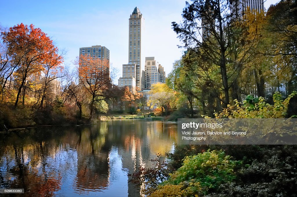 Fall foliage at the Duck Pond in Central Park, NYC