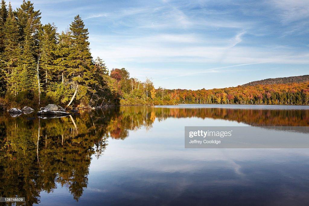 Fall Foliage May Pond