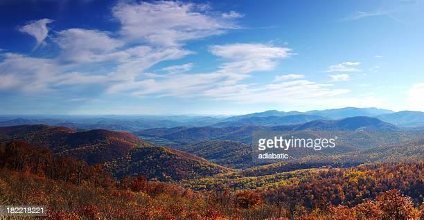 Fall foliage on the mountainside