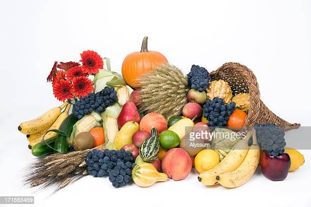 Herbst-Ernte