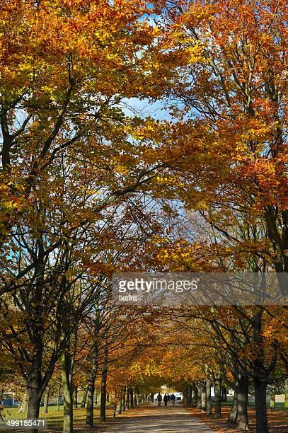 Fall in London