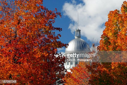 Fall in Montreal : Stock Photo