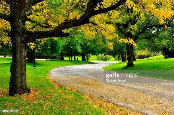 Fall Landscape, Albany, New York