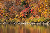 Fall season at Biwa pond on Mt.Shiga-kogen, Yamanouchi-machi, Shimotakai-gun, Nagano, Japan.