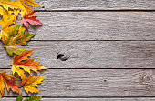 Fall season background, yellow maple leaves on rustic wood background with copy space.