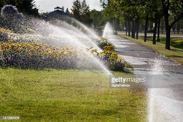Fall Sprinkler