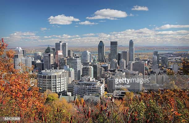 Herbst-Bäume mit skyline von Montreal im Hintergrund