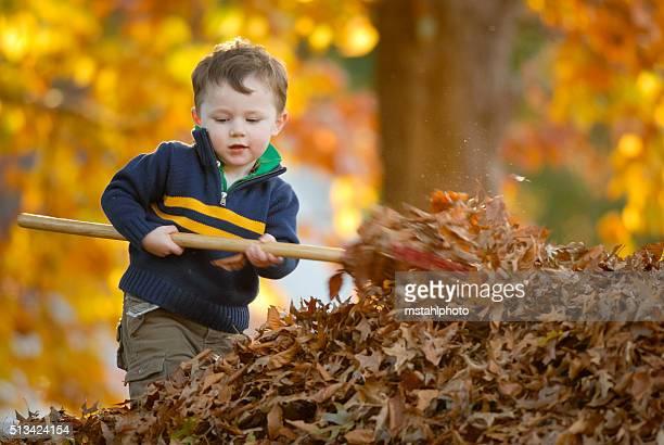 Fall Working
