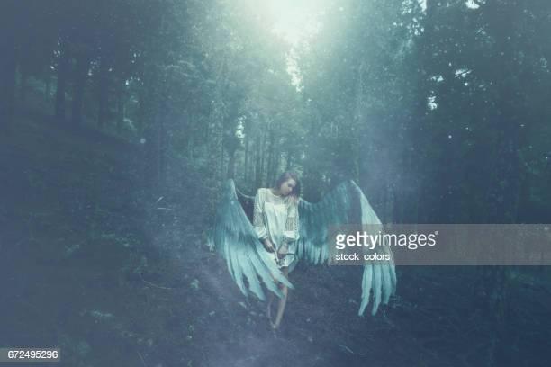 fallen angel in the forest