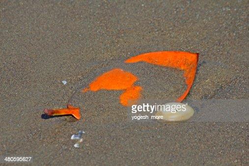 Fallen leaf on beach : Stock Photo