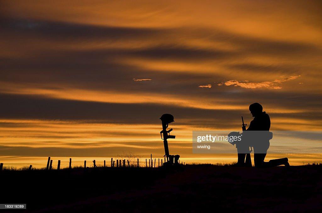 Fallen Soldier : Photo