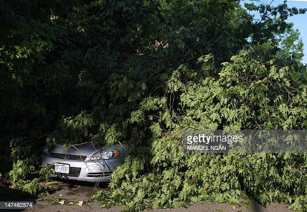 A fallen tree is seen on top of a car in the American University neighborhood of Washington DC on June 30 2012 the morning after a violent storm...