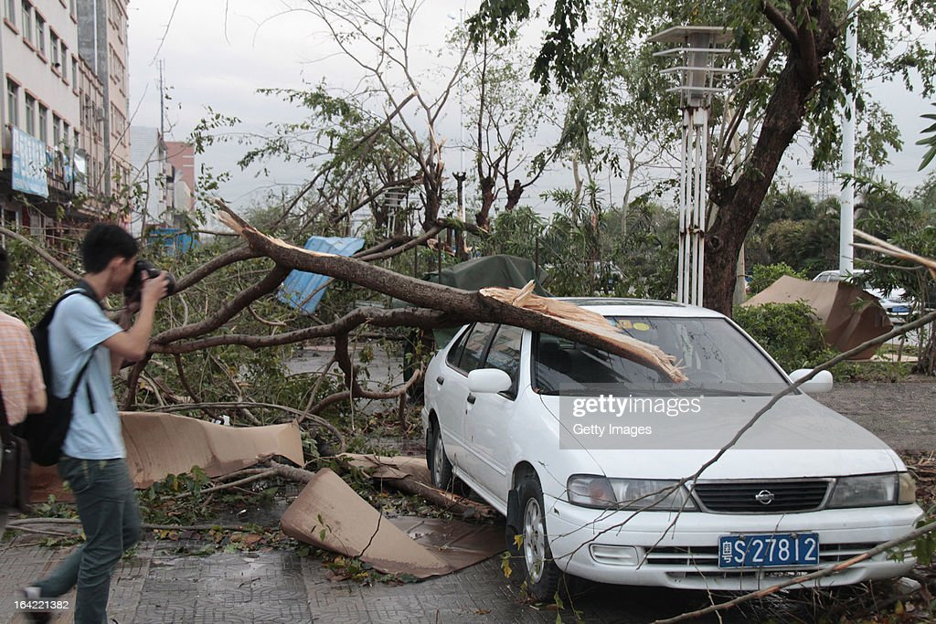 A fallen tree lies on top of a parked car on March 20, 2013 in Dongguan, China. Nine people have been killed and about 272 others injured after a thundersand hailstorm swept Dongguan city on Wednesday afternoon.