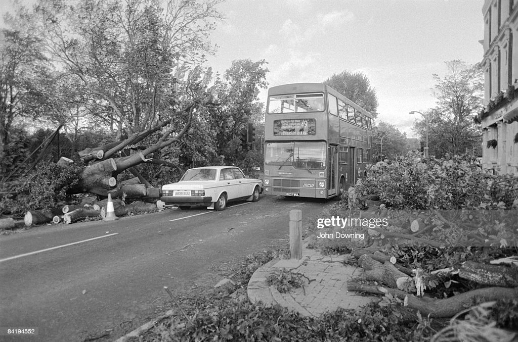 Fallen trees on a London street after the Great Storm in southern England, 17th October 1987.