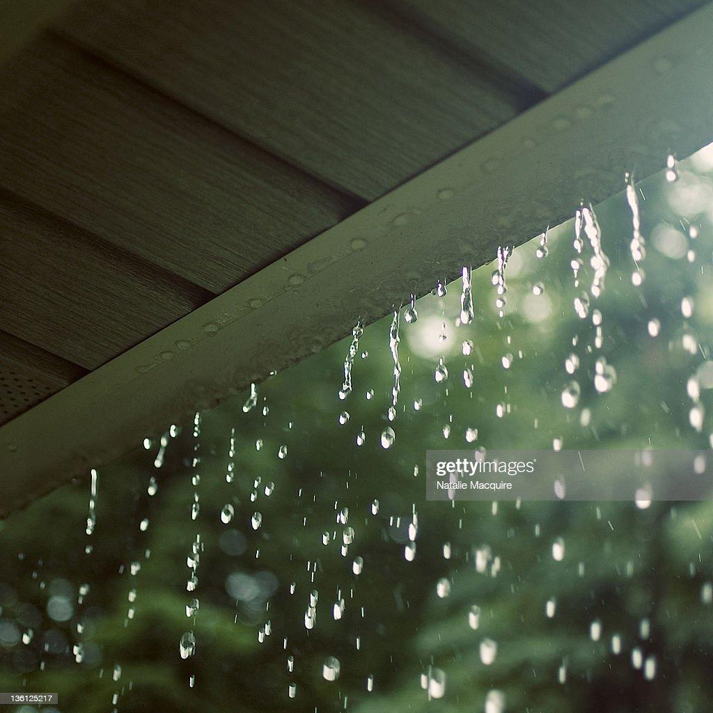 Falling rain : Stock Photo