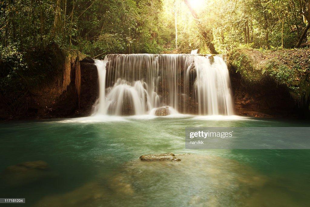 YS Falls in Jamaica : Stock Photo