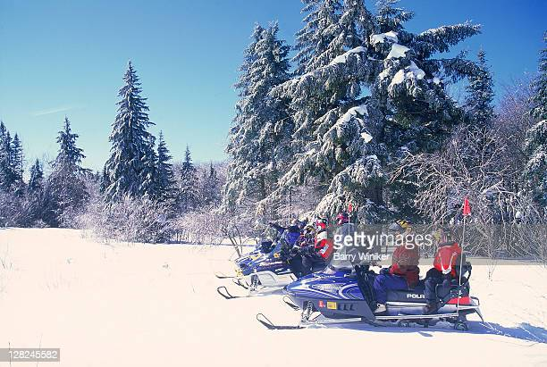 Families on snowmobile tour in Green Mountain National Forest, Woodford, Vermont