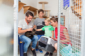 Family adopting cat from animal shelter taking her home