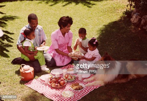 Family and Collie dog having a picnic in the park, elevated view : Stock Photo