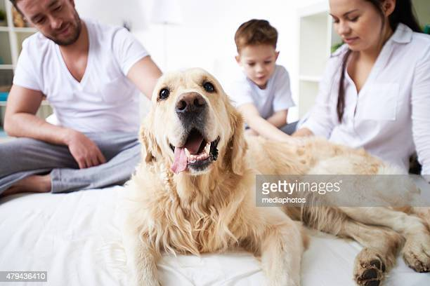 Family and their dog