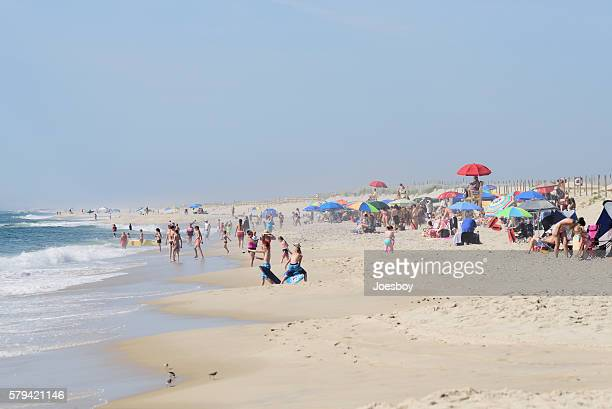 Family Beach Activity on Assateague Island