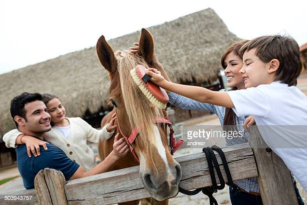 Family brushing a horse