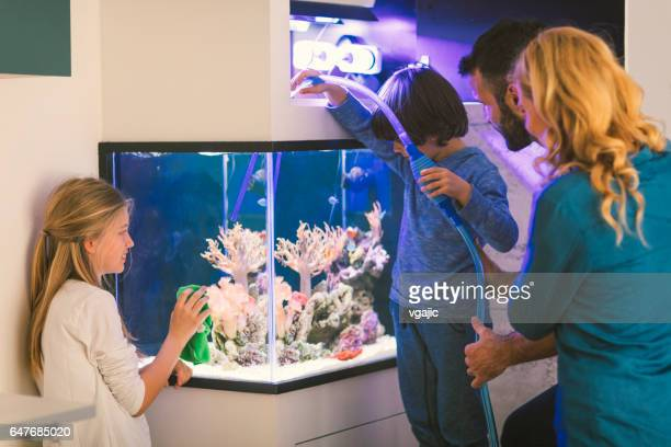 Family cleaning reef tank