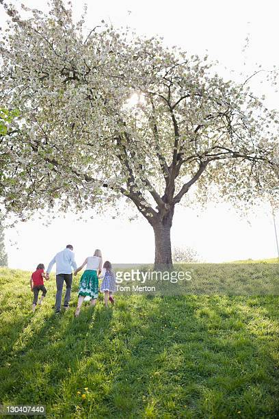 Family climbing hill in park