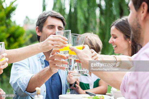 Family clinking glasses at outdoor gathering