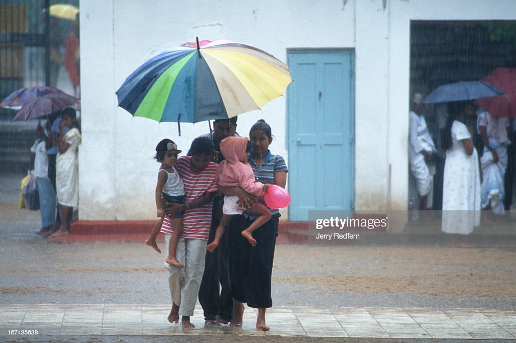 A family dashes through an afternoon downpour as they visit the Sri Maha Bodhi, or Holy Bodhi Tree. The tree has grown from a clipping of the original Bodhi tree under which the Buddha gained enlightenment in India more than 2,500 years ago. The clipping was brought to Sri Lanka more than 2,000 years ago, and is reportedly the oldest continuously documented plant on Earth..
