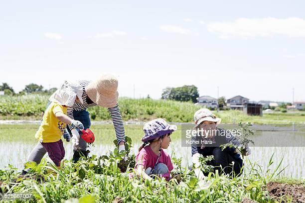 family doing farm work