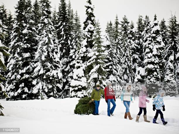 Family dragging Christmas tree out of snowy forest