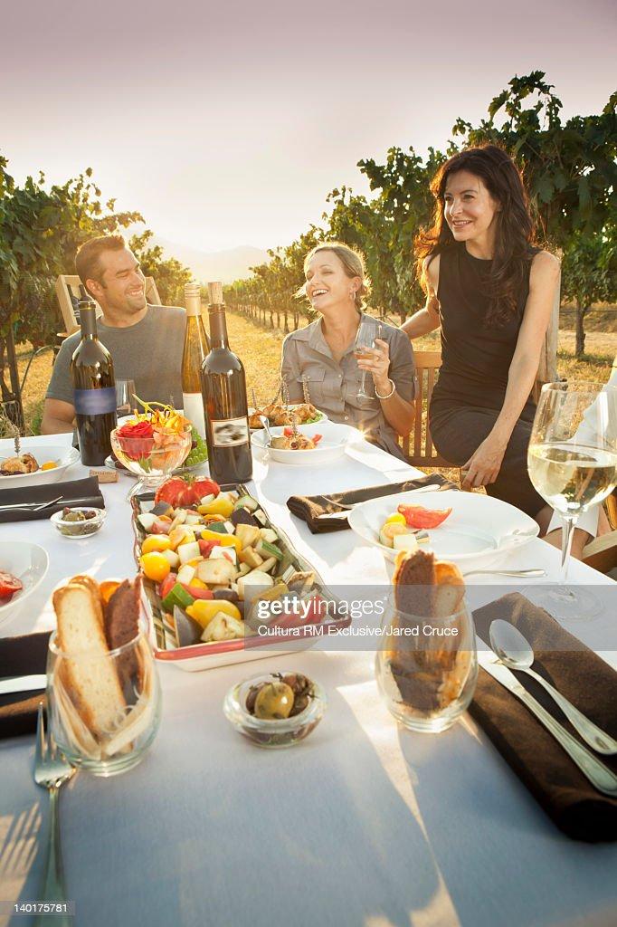Family eating dinner in vineyard : Stock Photo