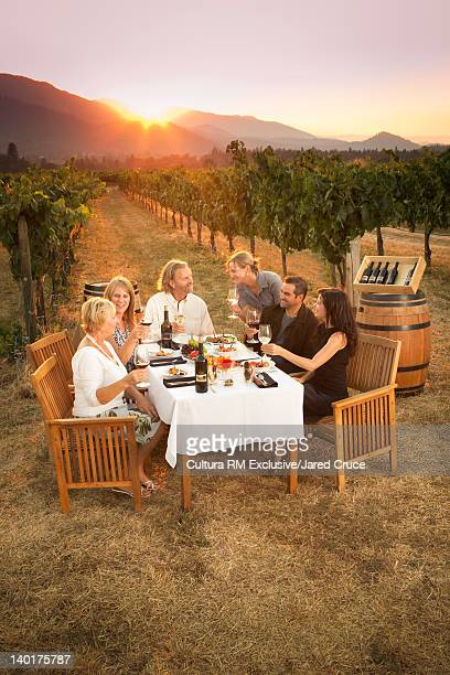 Family eating dinner in vineyard