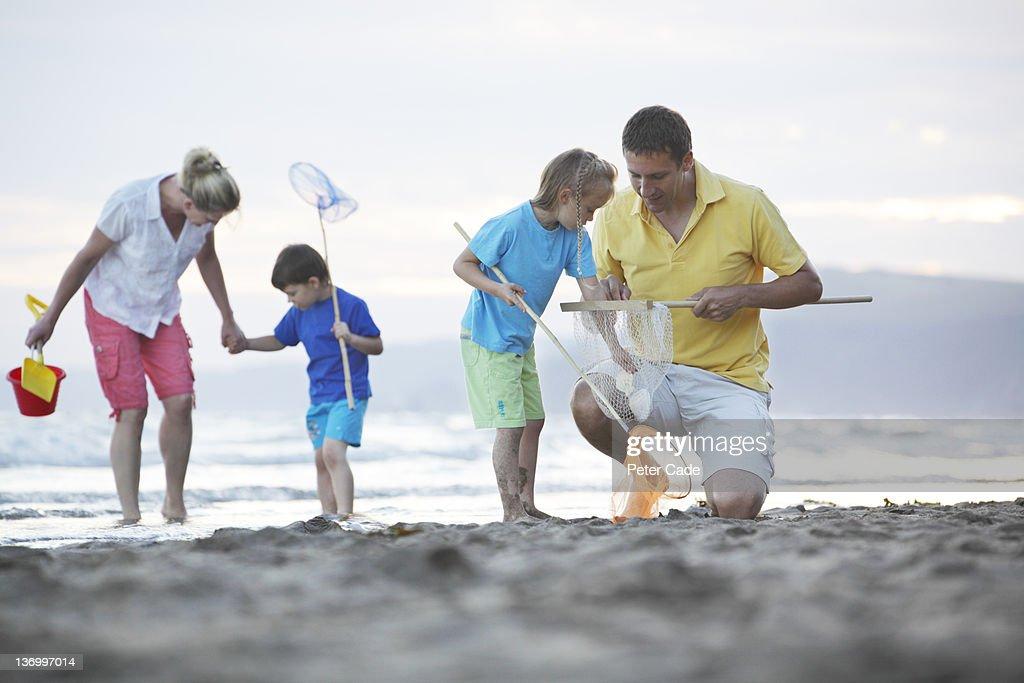 family exploring on beach : Stock Photo
