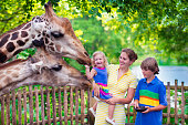 Happy family, young mother with two children, cute laughing toddler girl and a teen age boy feeding giraffe during a trip to a city zoo on a hot summer day