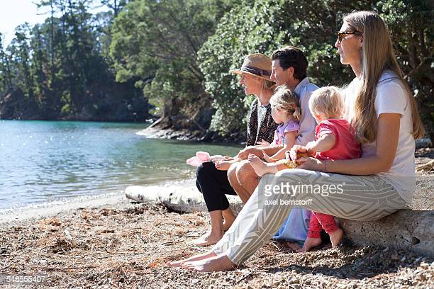 Family friends sitting on tree trunk at beach, New Zealand