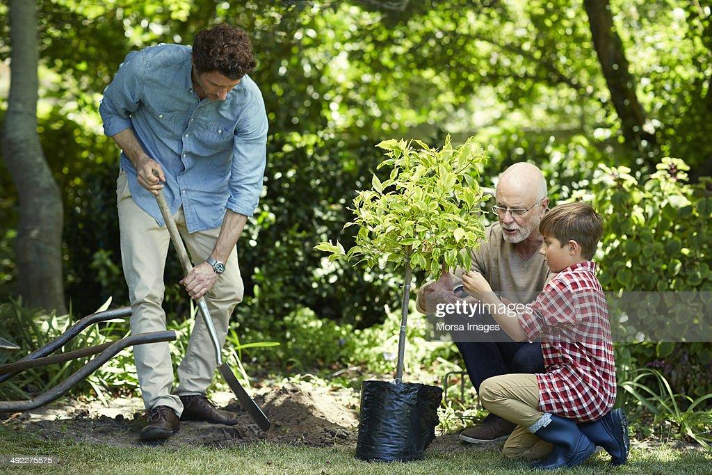 Family gardening in park