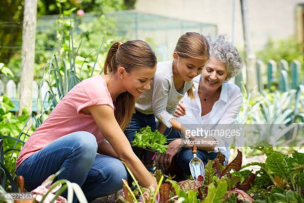 Family gardening together in yard