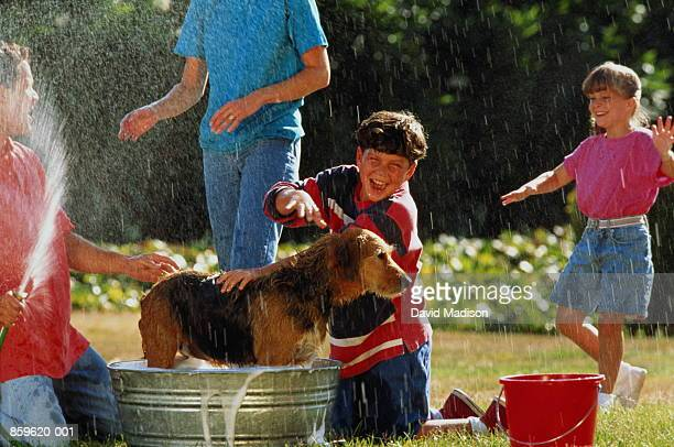 Family giving dog a bath outside, father holding hosepipe
