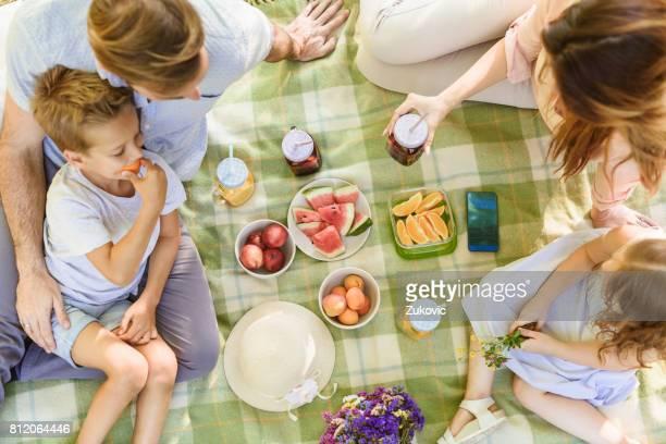 Family having a healthy summer picnic